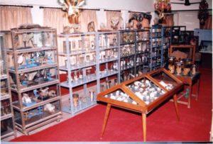 ncbgudi-zoology-museum-1