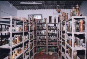 ncbgudi-zoology-museum-2